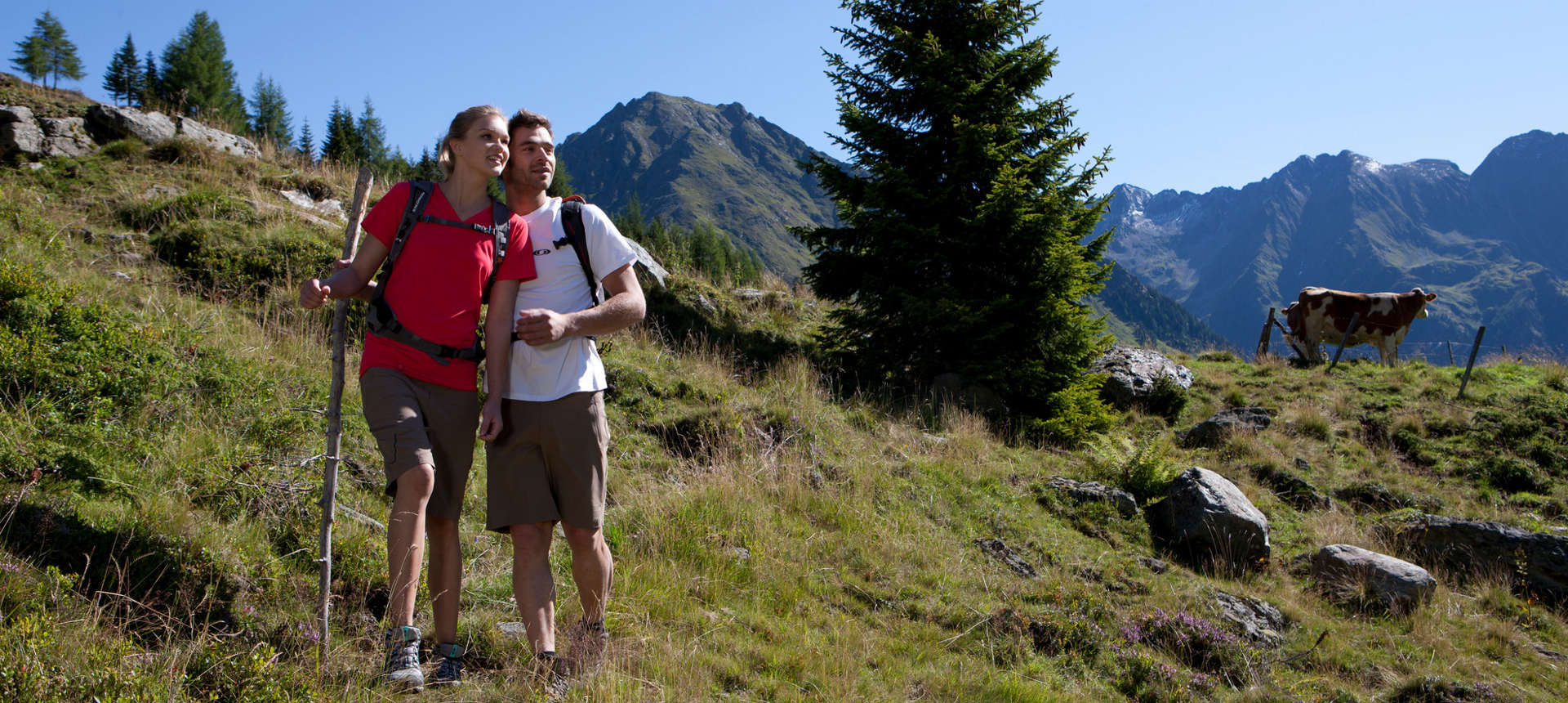 Hiking in the mountains at the national park in the region Grossglockner - Zellersee